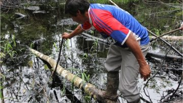 Las aflicciones del Marañón y el Urituyacu: gritos por la restauración integral
